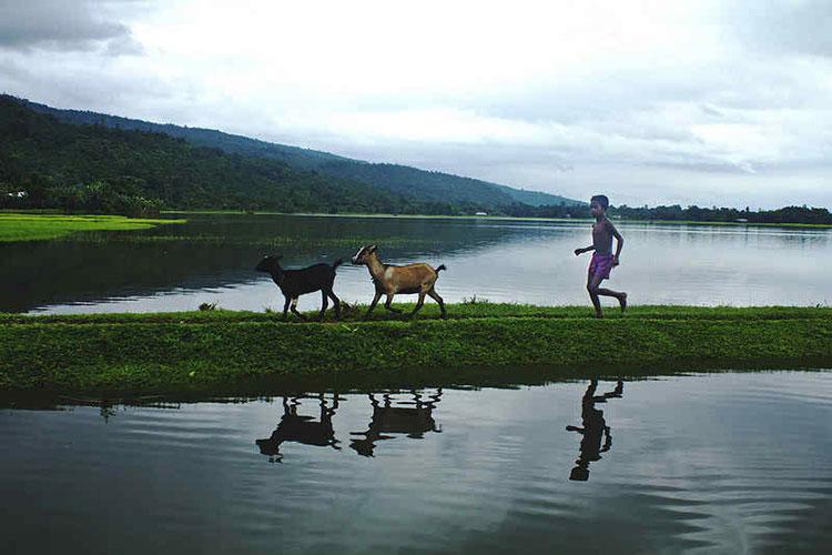 পাংথুমাই গামে নদীর কোল ঘেঁষে ছাগলছানা নিয়ে ঘরে ফিরছে ছোট্ট শিশু