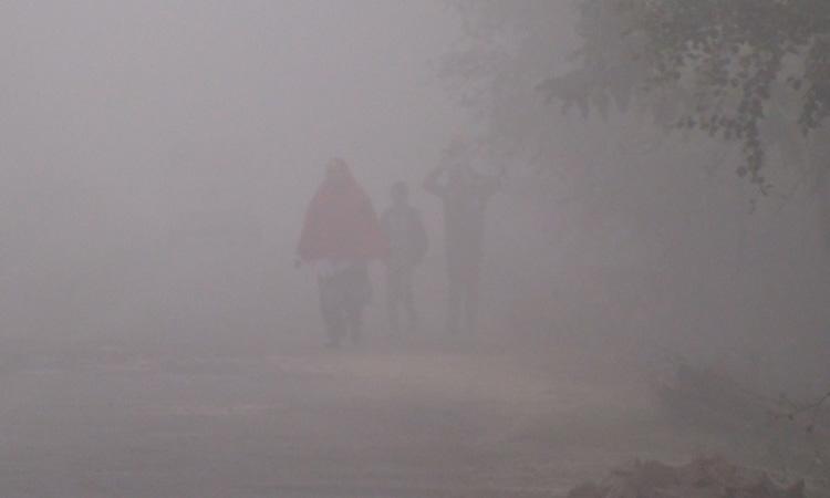 গোপালগঞ্জে তীব্র শীত ও ঘন কুয়াশায় জন জীবনের বেহাল দশা
