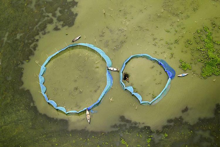 নদীতে নৌকা দিয়ে মাছ ধরা