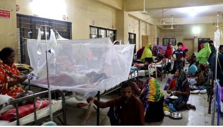ডেঙ্গু রোগে আক্রান্ত হয়ে হাসপাতালগুলোতে রোগী ভর্তির সংখ্যা বাড়ছেই