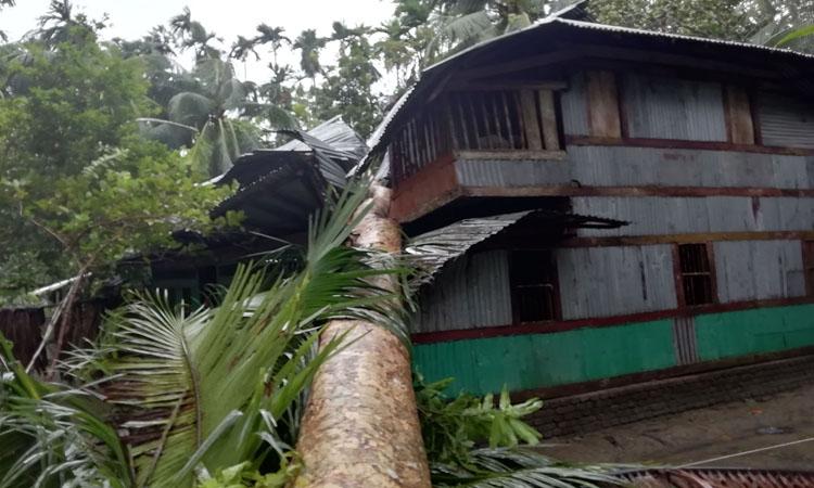 পিরোজপুরের কাউখালীতে ঘূর্ণিঝড় বুলবুলের তাণ্ডব
