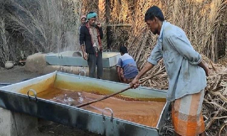শীতে দেশের প্রত্যন্ত অঞ্চলে খেজুরের গুড় তৈরিতে ব্যস্ত গাছিরা