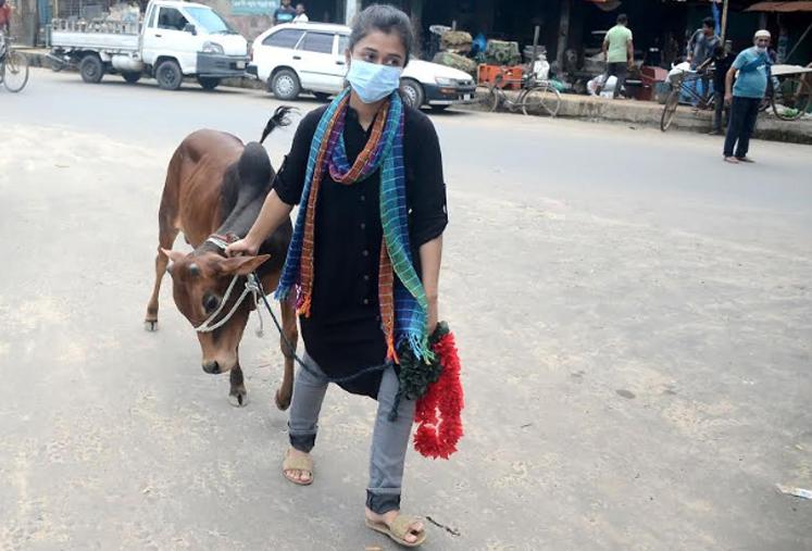 চট্টগ্রামের সাগরিকা পশুর হাট থেকে কোরবানির গরু কিনে বাড়ির পথে কলেজছাত্রী তামান্না